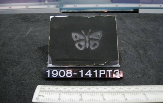 Black block with butterfly image