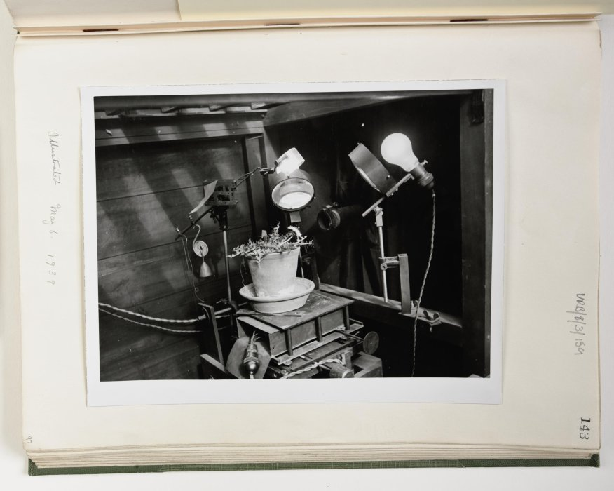 F. Percy Smith's home-based filming set up, including plant subject, 1939