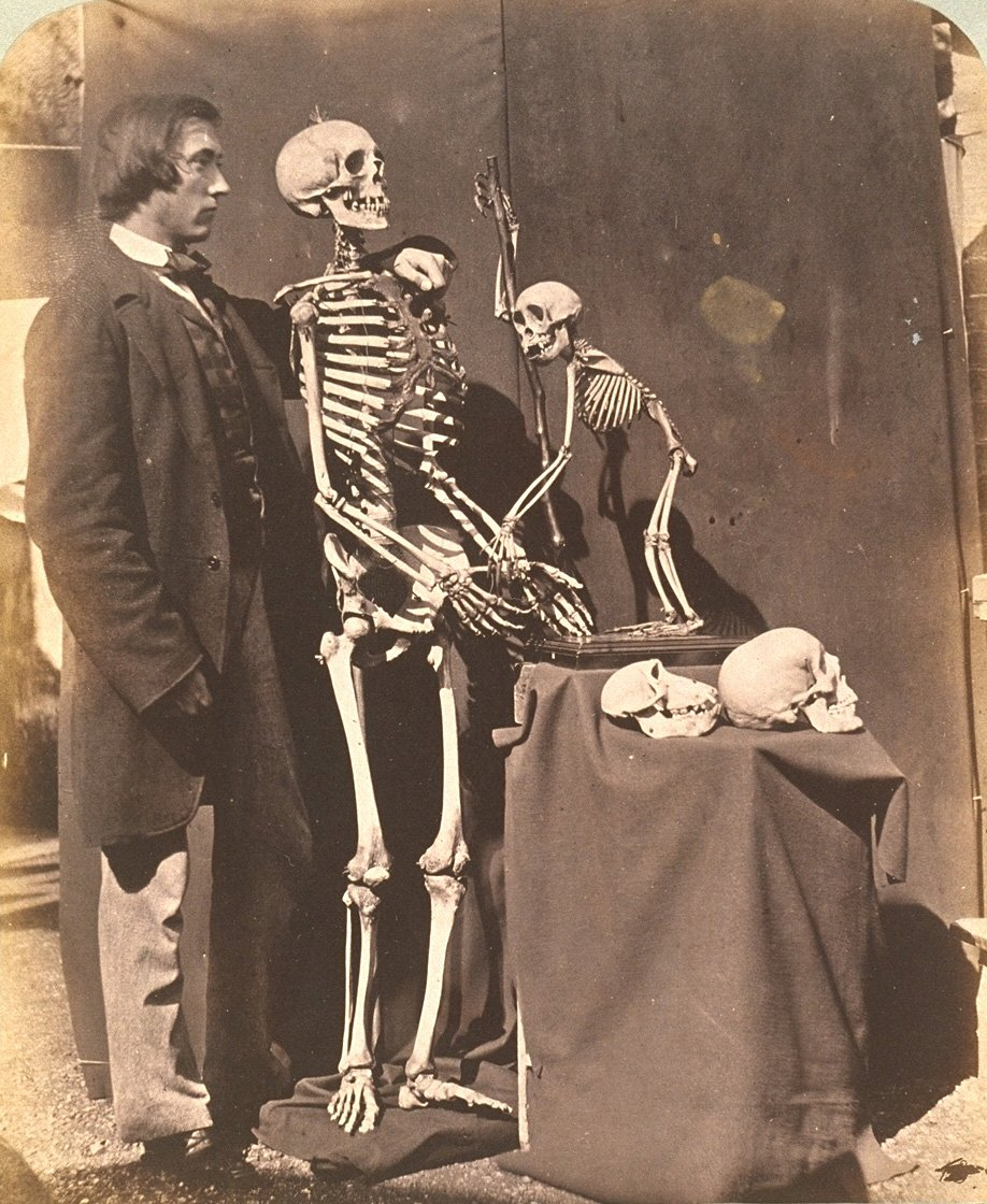 Reginald Southey and Skeletons, 1857, by Lewis Carroll